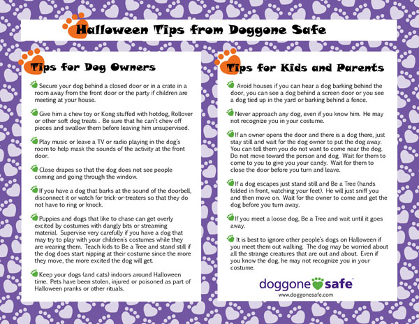 4 tips source related keywords suggestions for halloween safety slogans - Halloween Tips For Parents