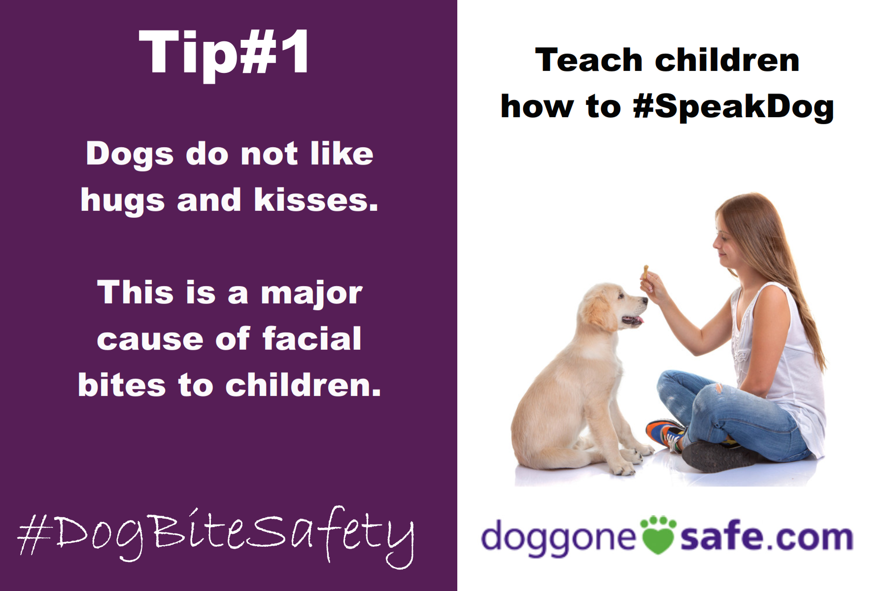 Learn About Dog Body Language